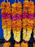 Floral Garland, Tamil Nadu, India Lámina fotográfica por Greg Elms