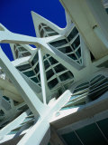 Detail of the City of Arts and Sciences Building, Valencia, Spain Photographic Print by Setchfield Neil