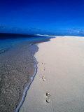 Footprints on Beach, Fiji Fotografie-Druck von Casey Mahaney