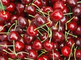 Cherries, Ripponvale, near Cromwell, Central Otago, South Island, New Zealand Fotografisk trykk av David Wall