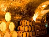 19th Century Wine Cellar, Juanico Winery, Uruguay Lámina fotográfica por Stuart Westmoreland