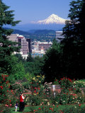 People at the Washington Park Rose Test Gardens with Mt Hood, Portland, Oregon, USA Photographic Print by Janis Miglavs