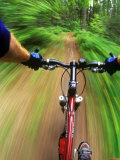 Mountain Bike Trail Riding Fotografisk trykk av Chuck Haney