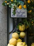 Lemons, Positano, Amalfi Coast, Campania, Italy 写真プリント : ウォルター・ビビコウ