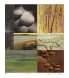 Life As A Stone-Acadia Series Collectable Print by Peter Kitchell