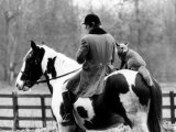A Pet Fox Sits on the Horse of Its Owner Photographic Print