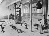 The Gymnasium of the Titanic Fotografie-Druck