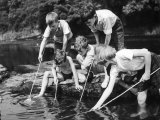 Group of Children Fishing in a Stream with Nets Impressão fotográfica
