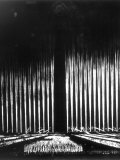 """Albert Speer's """"Cathedral of Light"""" at the Nuremberg Rally Photographic Print"""
