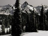 Snowy Mt. Rainer with Trees, Washington, USA Fotografie-Druck von Michael Brown