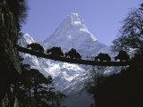 Bridge on Ama Dablam, Nepal 写真プリント : マイケル・ブラウン