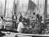 Fishermen Overhaul the Nets on Their Boats at Scarborough Yorkshire Reproduction photographique par Graystone Bird
