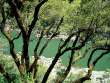 Rogue River, BLM Medford District, Siskiyou Mountains, Oregon, USA Impressão fotográfica por Jerry & Marcy Monkman