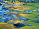 Fall Colors Reflect in the West River, Jamaica State Park, Vermont, USA Impressão fotográfica por Jerry & Marcy Monkman
