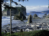 Ruby Beach, Olympic National Park, Washington, USA Fotoprint av William Sutton