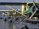 Seaplanes Docked on Lake Washington, Seattle, Washington, USA Photographic Print by John & Lisa Merrill
