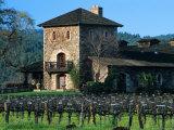 V Sattui Winery and Vineyard in St Helena  Napa Valley Wine Country  California  USA