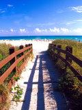 Boardwalk, South Beach, Miami, Florida, USA Fotografisk tryk af Terry Eggers