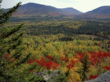Fall Colors in Wassataquoik Valley, Northern Hardwood Forest, Maine Impressão fotográfica por Jerry & Marcy Monkman