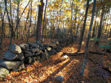 Stone Wall, Nature Conservancy Land Along Crommett Creek, New Hampshire, USA Impressão fotográfica por Jerry & Marcy Monkman