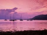 Clifden Bay, Connemara, Ireland Lámina fotográfica