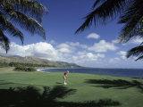 Golf Course in Paradise Lámina fotográfica