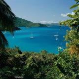 Virgin Islands National Park St. Johns Us Virgin Islands Lámina fotográfica