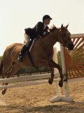 Side Profile of a Woman Riding a Horse Over a Hurdle Lámina fotográfica