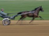 Red Mile Harness Track, Lexington, Kentucky, USA Lámina fotográfica