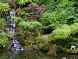 Japanese Gardens Washington Park Portland Oregon, USA Fotoprint