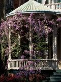 Savannah, Georgia, USA Lámina fotográfica