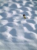Steamboat Springs, Colorado, USA Lámina fotográfica