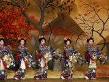 Kitano Odori Kamishichigen, Kaburenjo Hall, Japan Lámina fotográfica