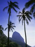 Sugar Loaf Mountain, Rio de Janeiro, Brazil Lámina fotográfica