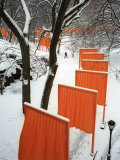A Cross Country Skier Slides Through a Section of the Gates Photographic Print