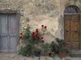 Tuscan Doorway in Castellina in Chianti, Italy Photographic Print by Walter Bibikow