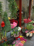 Florist in Ile St. Louis, Paris, France Fotoprint van Lisa S. Engelbrecht