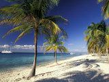 Tropical Beach on Isla de la Juventud, Cuba Fotografie-Druck von Gavriel Jecan