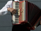 Street Accordionist, Prague, Czech Republic Reproduction photographique par David Barnes