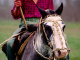 Gaucho on Horse, Buenos Aires, Argentina Photographic Print by Michael Coyne