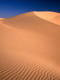 Algodones Dunes in Imperial Sand Dunes Recreation Area, California, USA Fotografisk tryk af Mark Newman