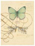 Scripted Papillon Kunstdrucke von Chad Barrett