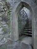 Castle Doorway, County Mayo, Ireland Photographic Print by William Sutton