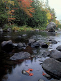 The 100 Mile Wilderness section of the Appalachian Trail, Maine, USA Impressão fotográfica por Jerry & Marcy Monkman
