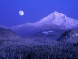 Moonrise over Mt. Hood, Oregon, USA Stretched Canvas Print by Janis Miglavs