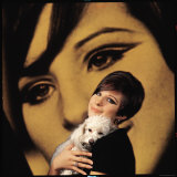 Singer and Actress Barbra Streisand Holding Small Dog in Her Arms Premium fototryk af Bill Eppridge