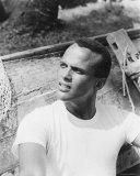 Harry Belafonte Foto