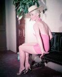 Dorothy Provine Foto