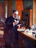 Illustration of French Chemist Louis Pasteur Working in His Laboratory Lámina fotográfica prémium