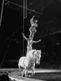 Ringling Brothers' Barnum and Bailey Circus Performers Riding on Back of Horse Photographic Print by Ralph Morse